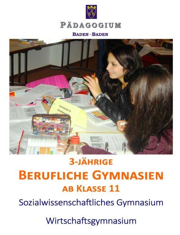 Informationsflyer Berufliches Gymnasium